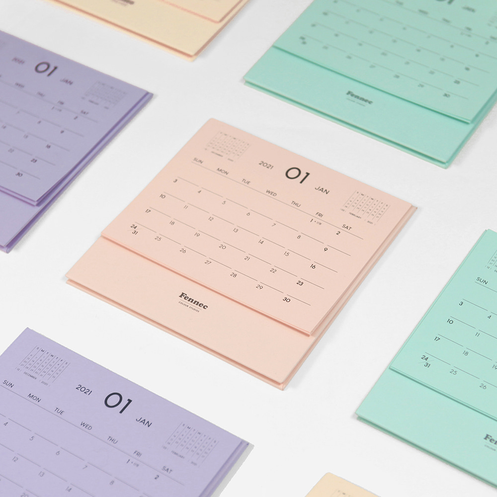 FENNEC 2021 COLOR CALENDAR (4colors)